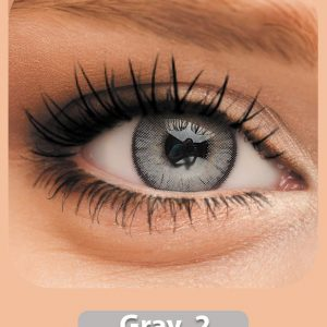 Gray-2-INSCL